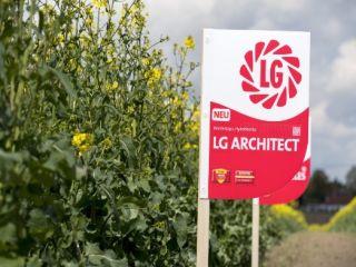 LG Architect