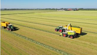 'Gras: de kostprijsverlager bij uitstek'