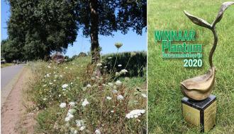 Limagrain wint duurzaamheidsprijs met biologische bestrijding eikenprocessierups